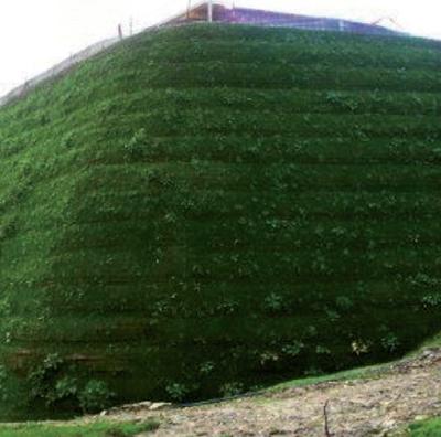 Taludes y desprendimientos for Muros verdes naturales